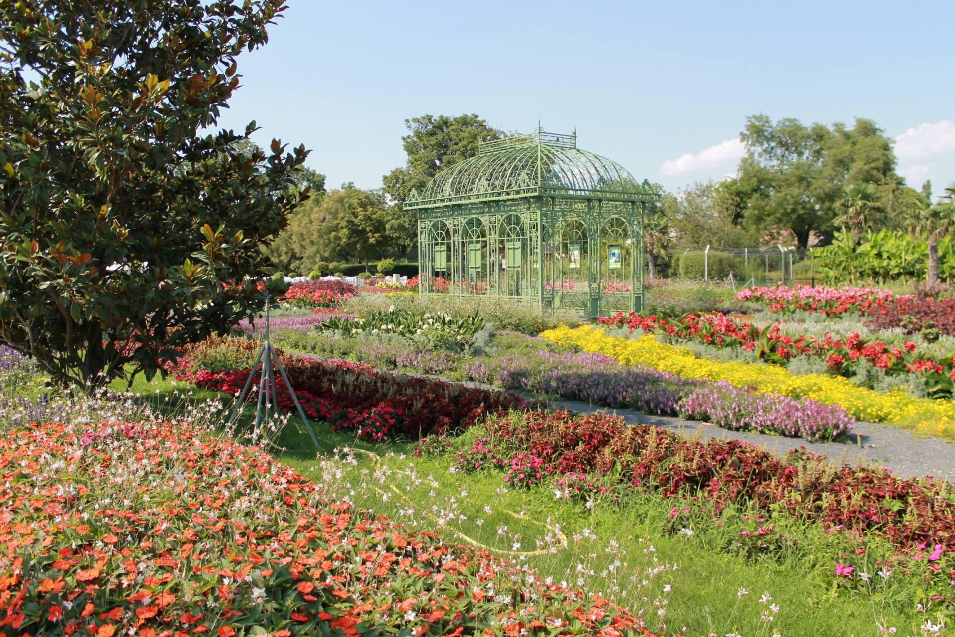 Bilder Blumengarten hirschstetten flower gardens vienna insightvienna insight